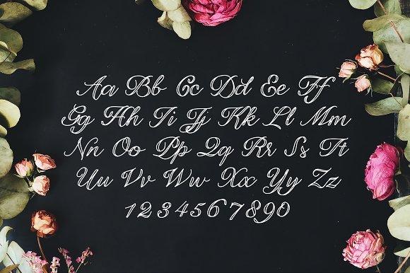 Laura Rose Font