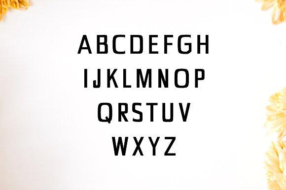 Chrys Sans Serif 4 Font Family Pack