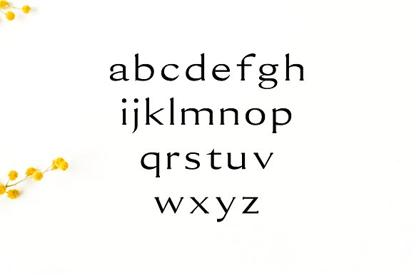 Erynn Serif Font