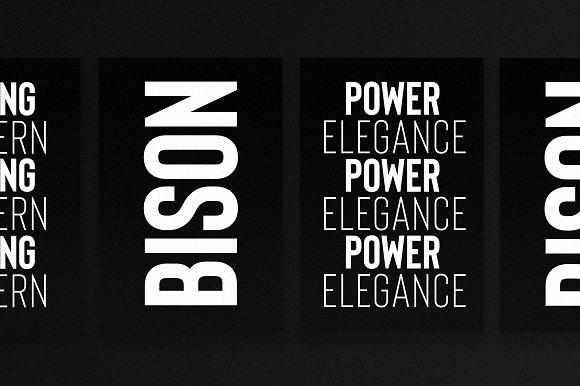 (NEW) Bison - A Powerful Sans Serif