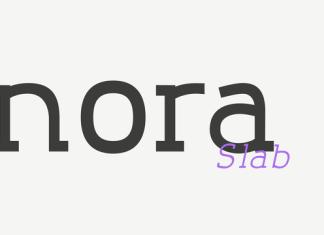 Nora Slab Font Family