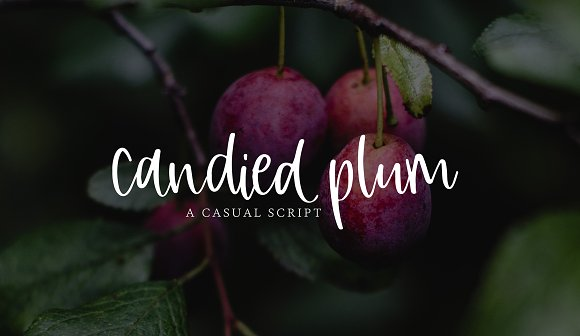 Candied Plum Font