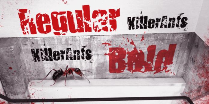Killer Ants Font Family
