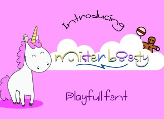Mister Boosty Other Font