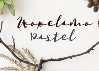 Wopelamo Pastel script font by Southern Font Store