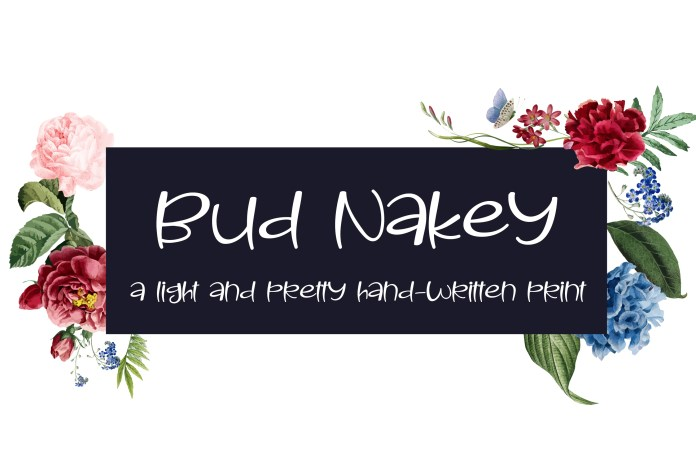 PN Bud Nakey Script Font