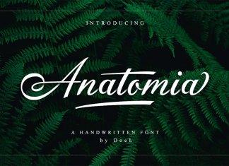 Anatomia Script