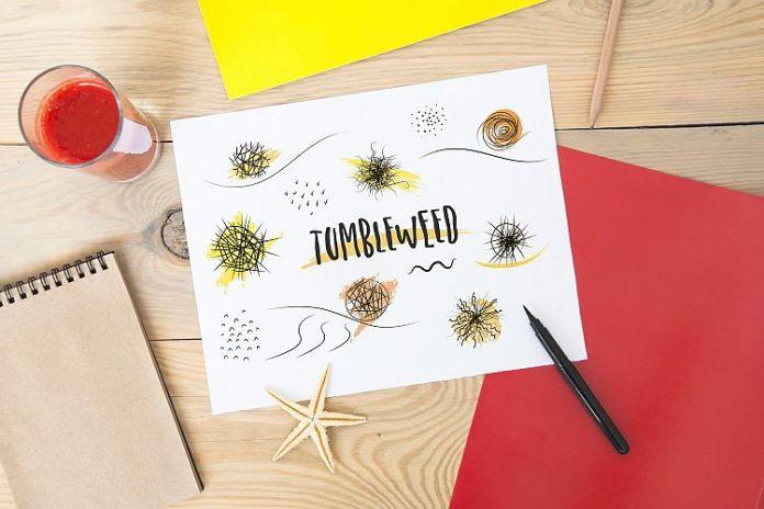 Organic Font Script Font