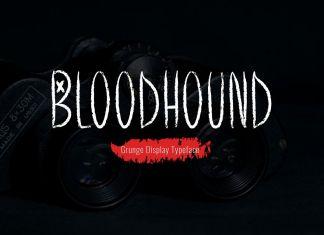 Bloodhound Regular Font