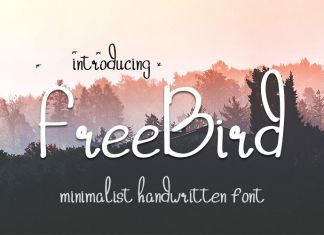 freebird handwritten Script Font