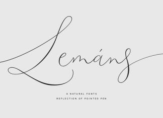 Lemans Pen Script Font Family