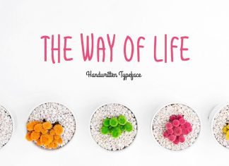 The Way Of LifeRegular Font