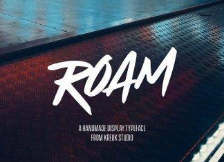 Roam Display Font 50% OFF
