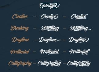 Antonellie Hand Lettere Font