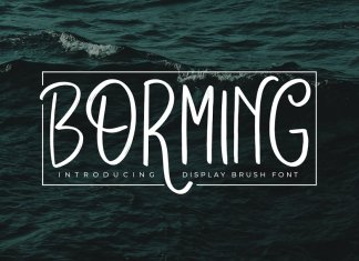 Borming Typeface Font