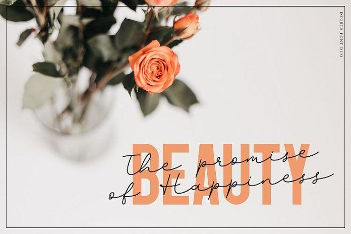 Degres Font Duo Script Font