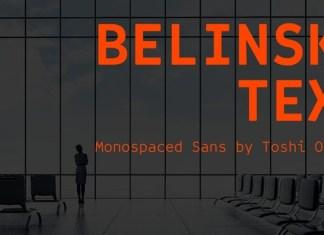 Belinsky Text Font Family Font