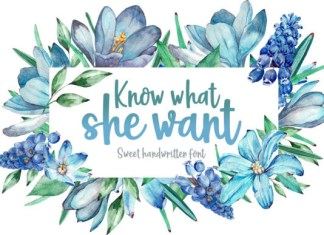 Know What She Want Font