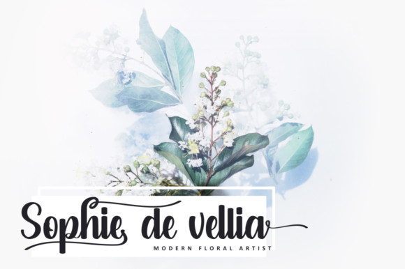 Salsabella Font