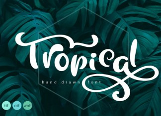 Tropical Summer Font Other Font