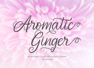 Aromatic Ginger Font