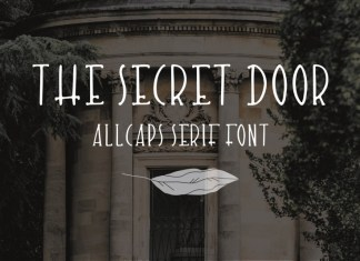 The Secret Door. Cute handdrawn font