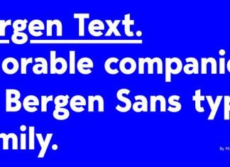 Bergen Text Font Family