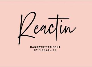 Reactin // handwritten Font