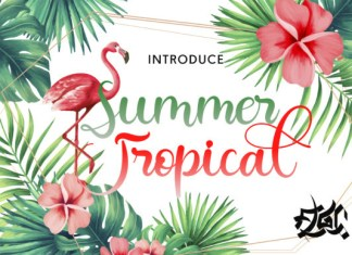 Summer Tropical Font