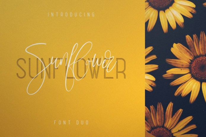Sunflower - Font Duo Font