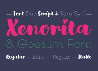 Xenorita & Goeslim Duo Font