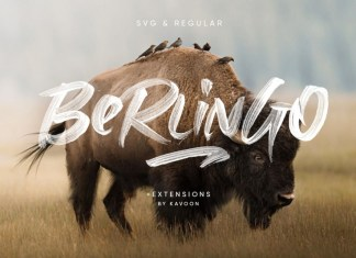Berlingo SVG Font