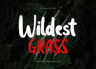 Wildest Grass Font