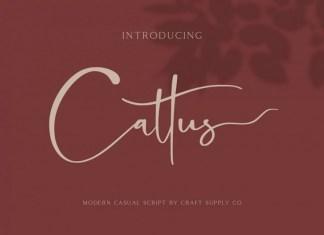 Cattus Font
