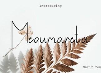 Megumareta Font