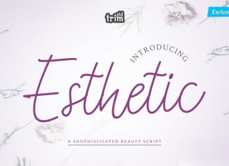 Esthetic Font