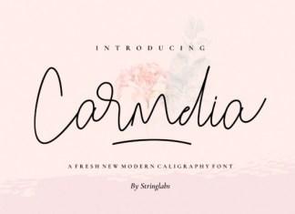 Carmelia Font