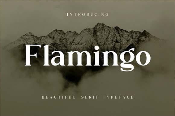 Flamingo Serif Font