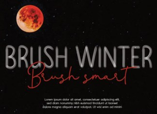Brush Winter Font