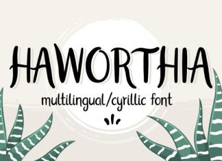 Haworthia Font