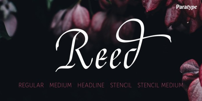 Reed Font