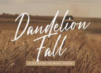 Dandelion Fall Font