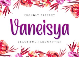 Vaneisya Font
