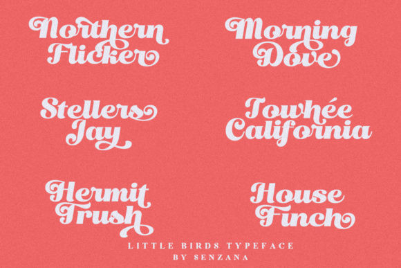 Little Birds Font