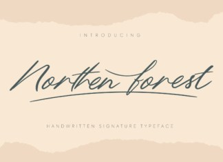 Northern Forest Font