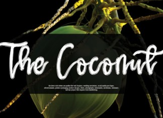The Coconut Font