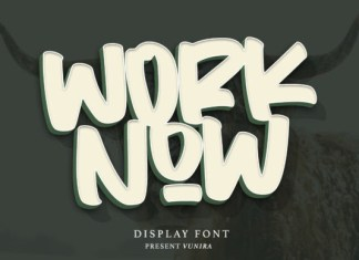 Worknow Font
