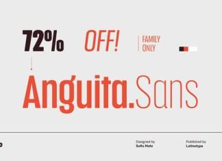 Anguita Font