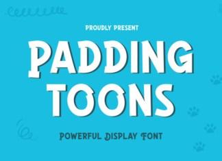 PADDINGTOONS Font