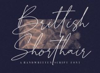Brittish Shorthair Font
